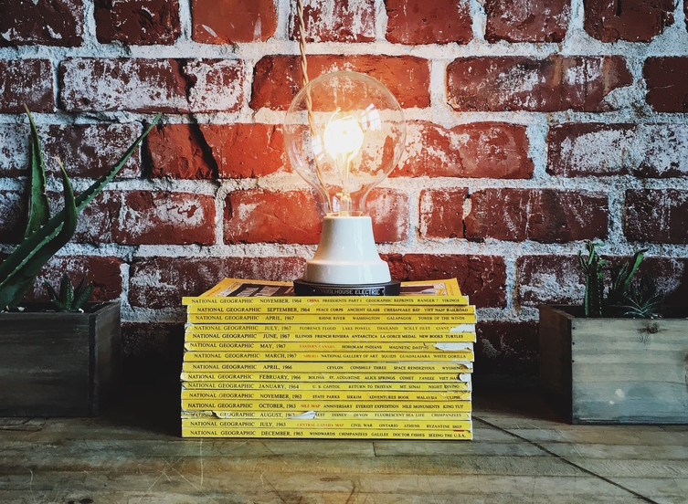 An image of a lit lightbulb standing on a pile of National Geographic magazines flanked by two potted plants on the backdrop of an exposed-brick wall.